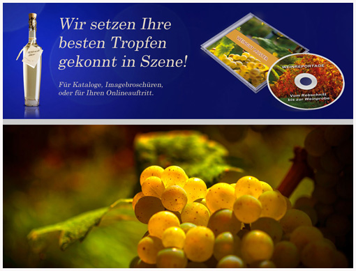 Weinreportagen von Jürgen Heise vinumtempore.de